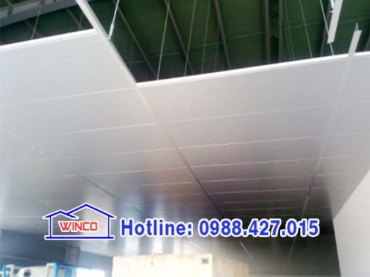 trần panel
